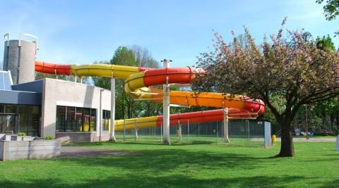Zwembad Roerdomp